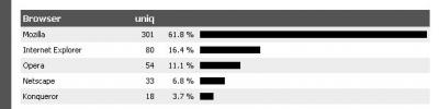 Browser Statistik