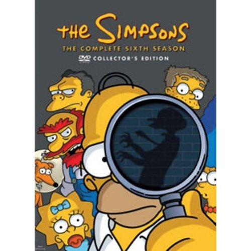 Die Simpsons - Die komplette Season 6